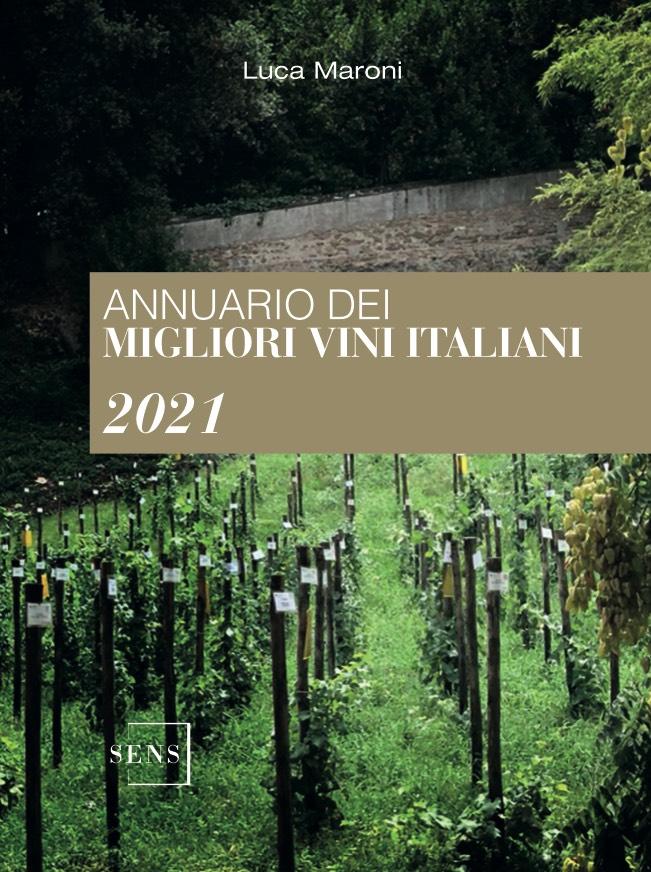 vigneto-erba-verde-green-vino-wine