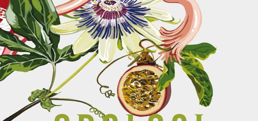 fiori-pianta-orologi