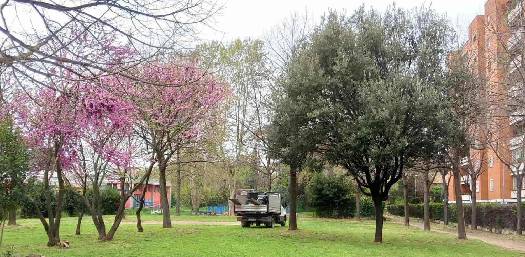 alberi-fiori-verde-prato-camion