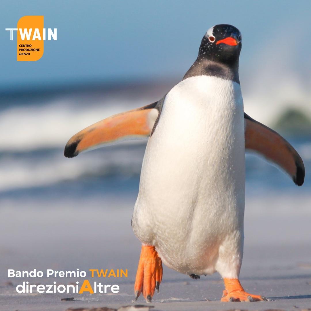 pinguino-ghiaccio-neve