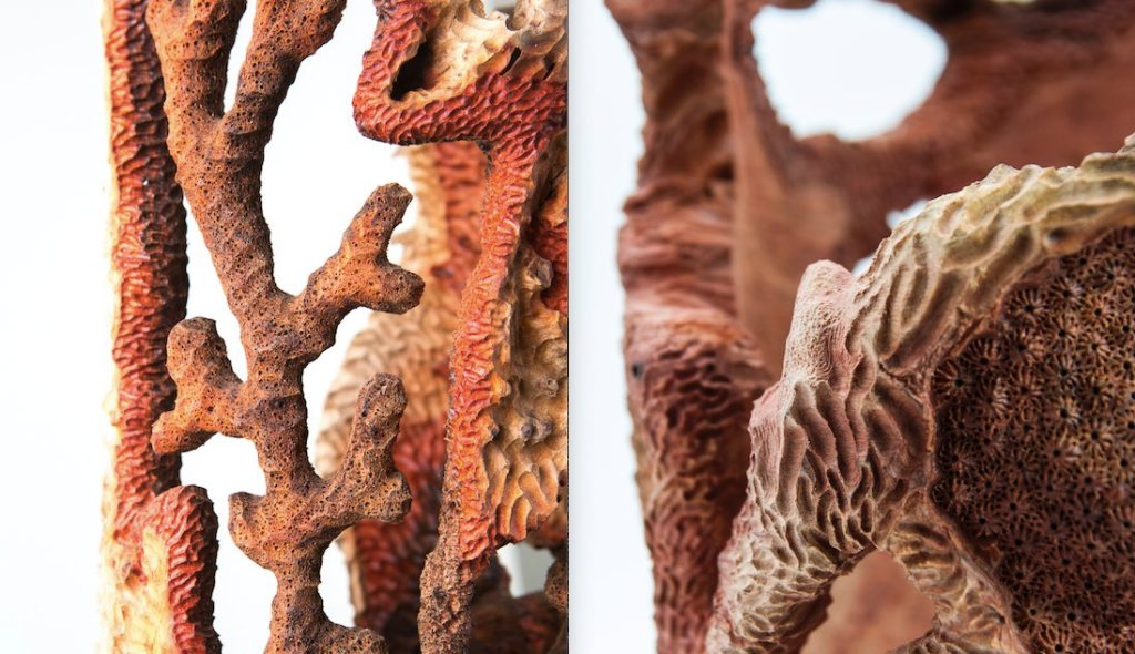 legno-corallo