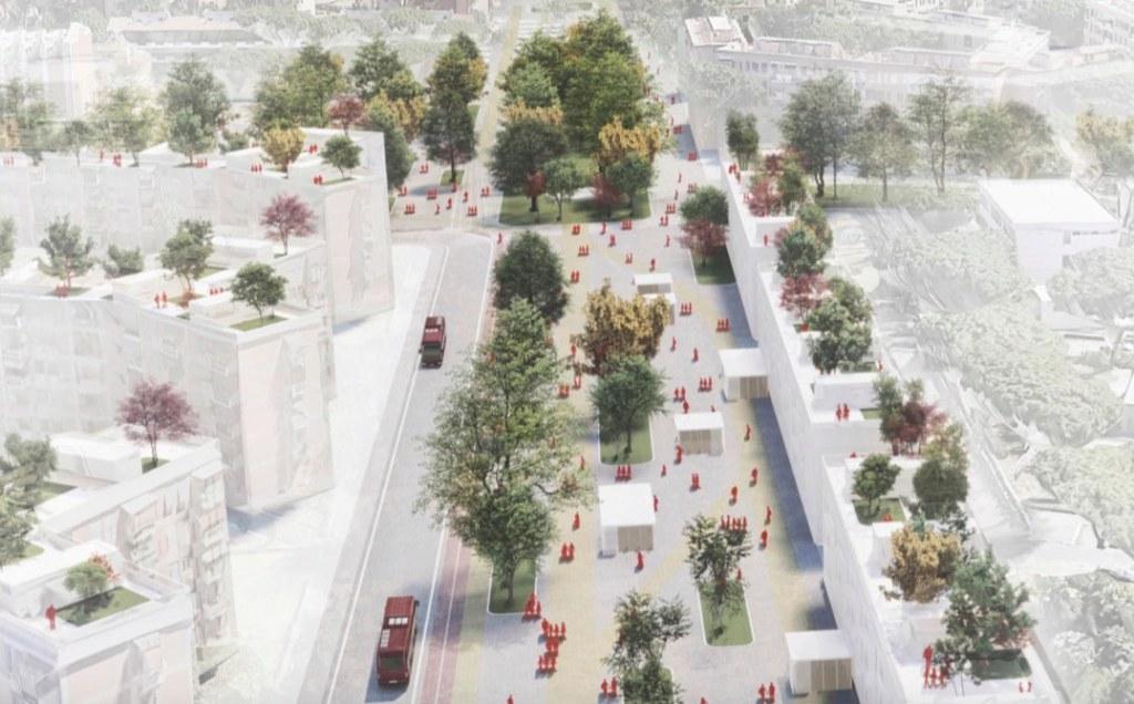 alberi-viali-edifici-persone