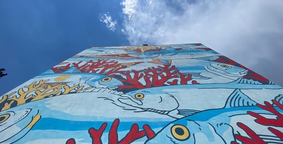pesce-corallo-cielo-murales-nuvole