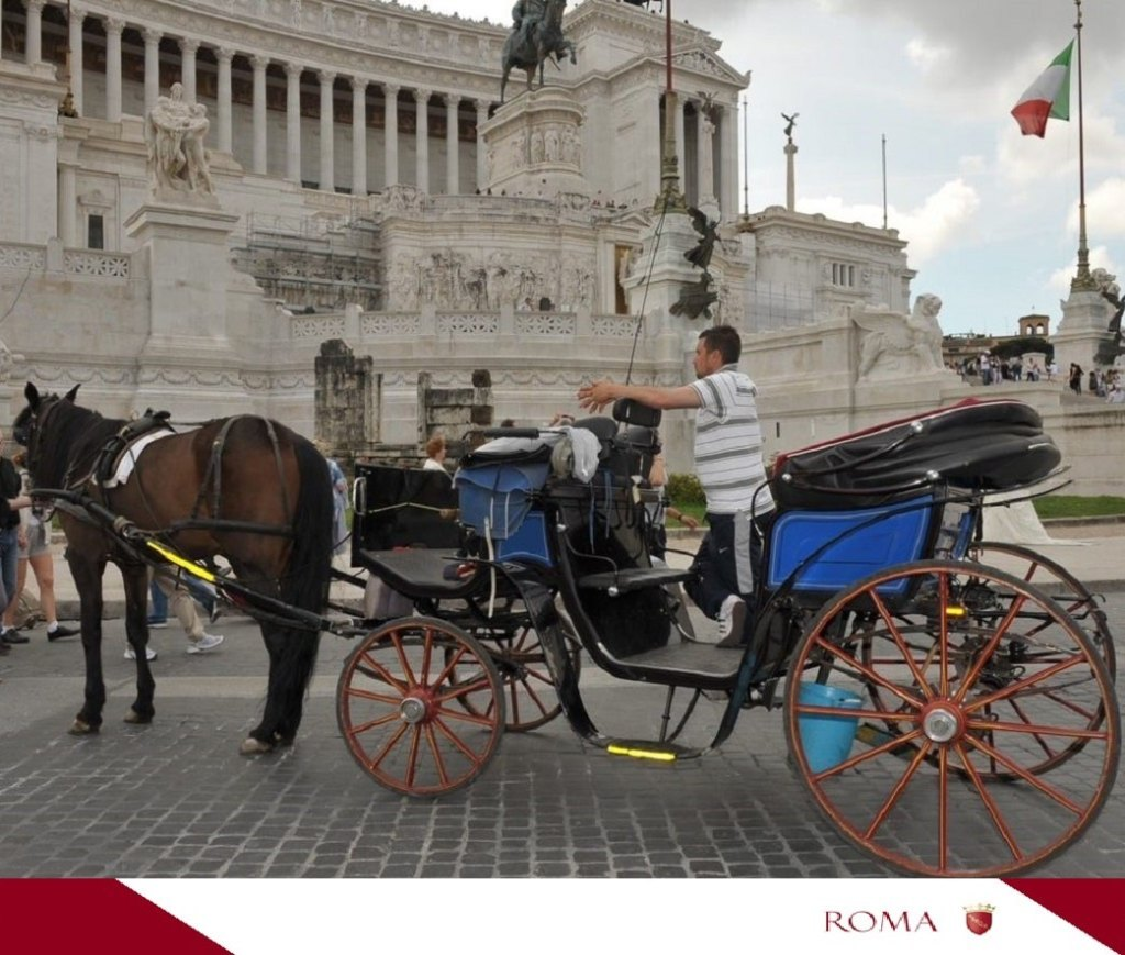 cavallo-carrozza-botticelle-roma