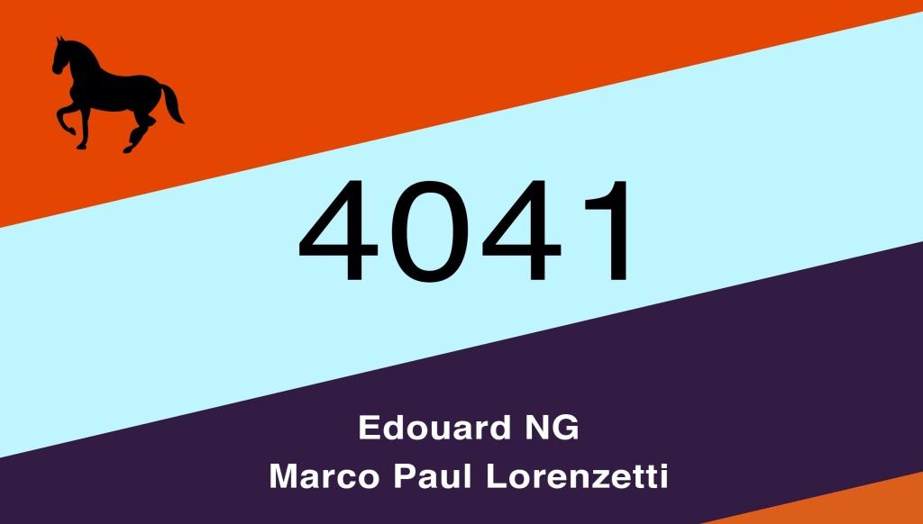 4041-cavallo-strisce