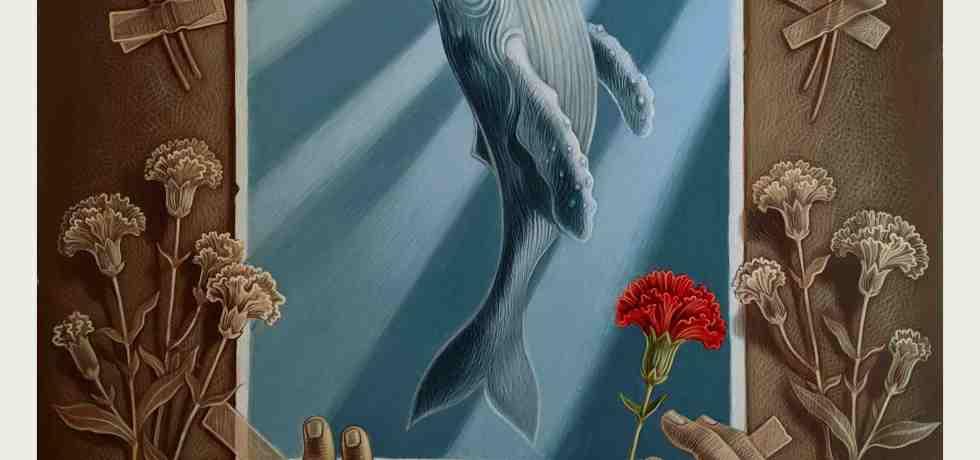 balena-mani-fiori-aureola-luce