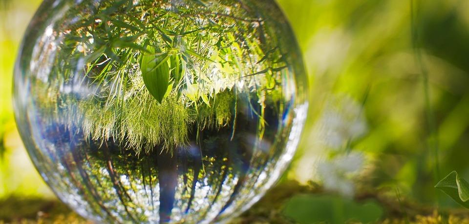 sfera-ball-erba-verde-alberi